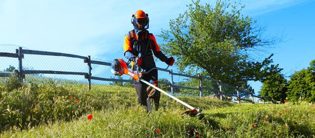 New professional petrol brushcutters